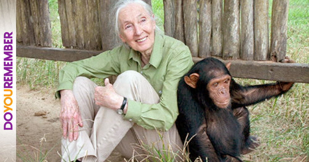 The Incredible Work of Jane Goodall
