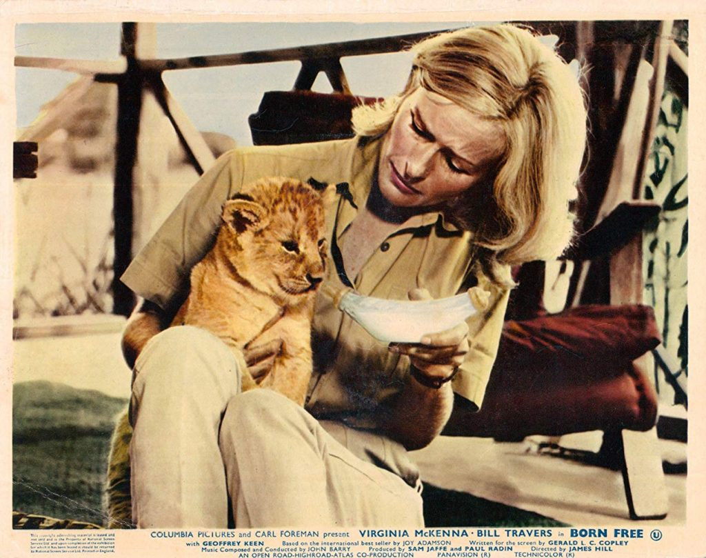 A snapshot from the 1966 film, Born Free.