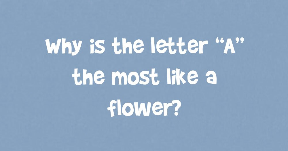 Why Is The Letter A The Most Like A Flower?