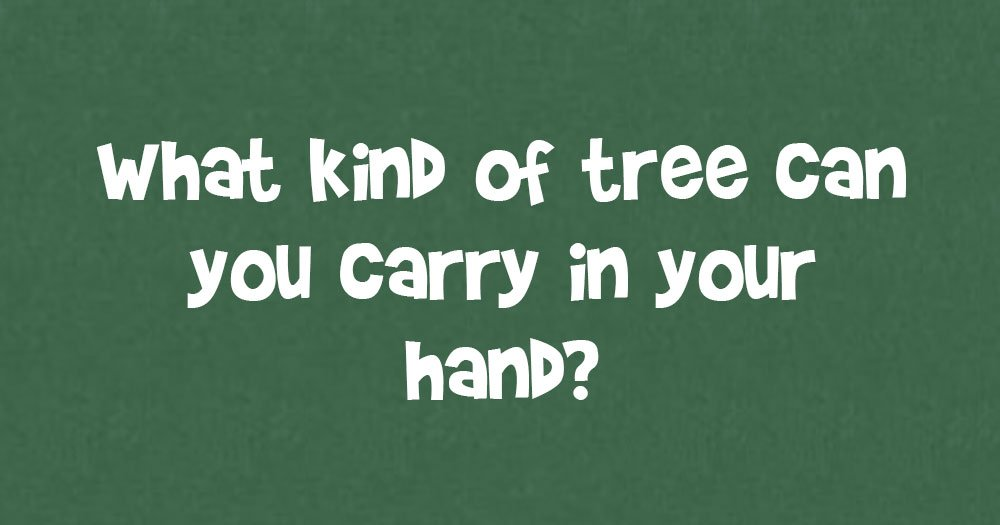 What Kind Of Tree Can You Carry In You Hand?