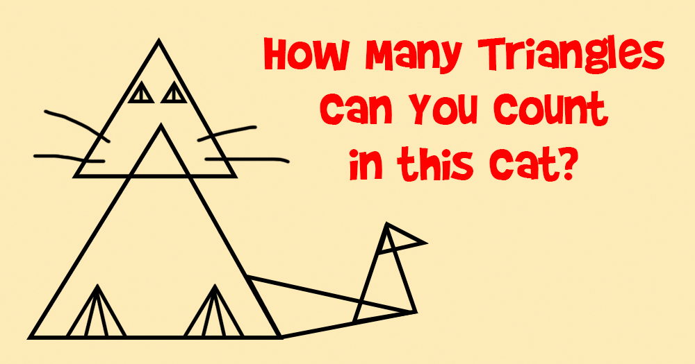 How Many Triangles can You Count in this Cat?
