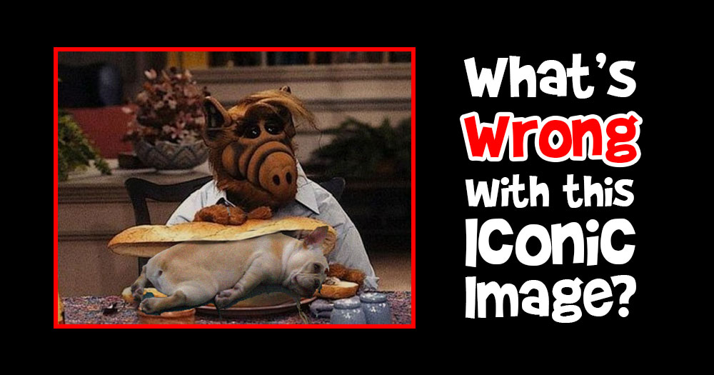 What's Wrong with this Scene from ALF?