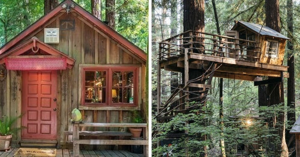 Do It Yourself Home Design: This Tiny Cabin In The Redwoods Is The Perfect Getaway For