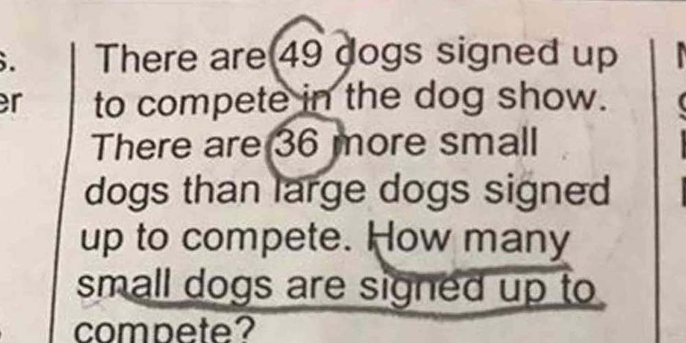 Math Homework Goes Viral After 7-Year-Old's Mother Can't Solve It