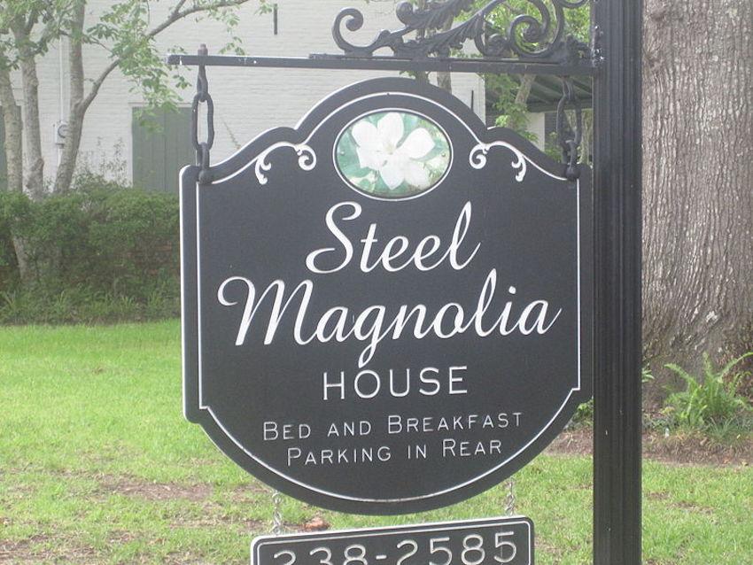 steel magnolia house
