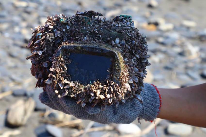 camera barnacles