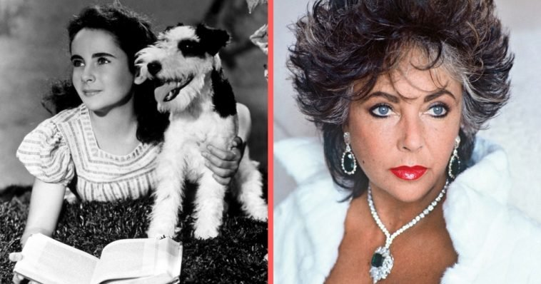 bc2ba56e5 Elizabeth Taylor: 10 Things You Didn't Know | DoYouRemember?