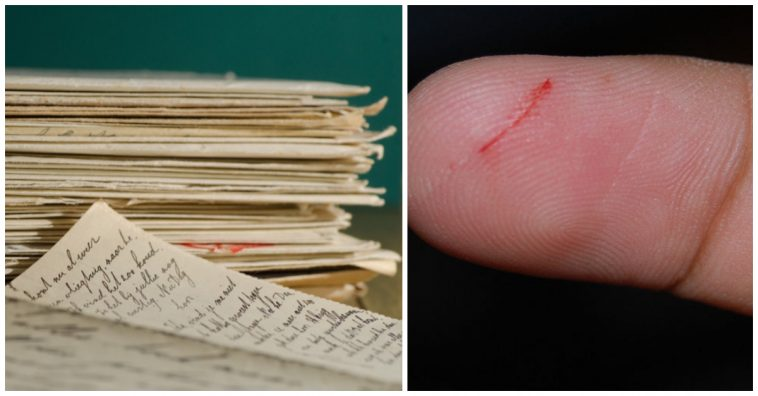 here u0026 39 s the science behind why paper cuts hurt so much