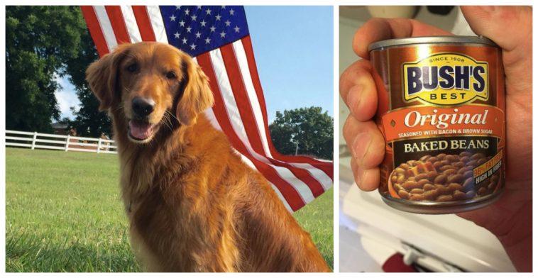 duke the bush bean s dog dies paranormal forum where things go