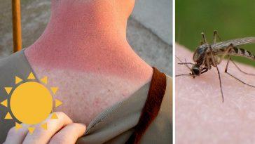 summer-ailments