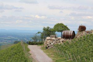 Wine Barrel Hotel Germany