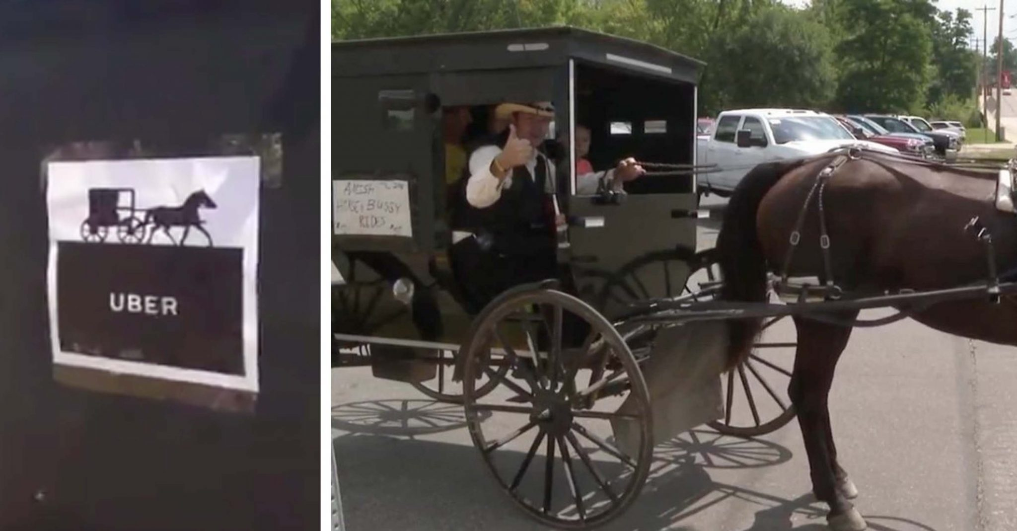 Man Creates 'Amish Uber' Out Of Buggy And Horse