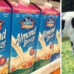 almond-milk-recall