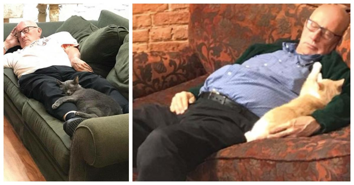 Man Visits His Local Animal Shelter Everyday To Nap With Cats