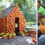 pumpkin-farms