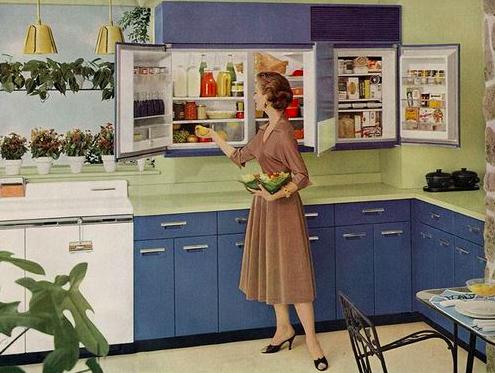wall hung fridge