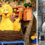 big-bird-caroll-spinney