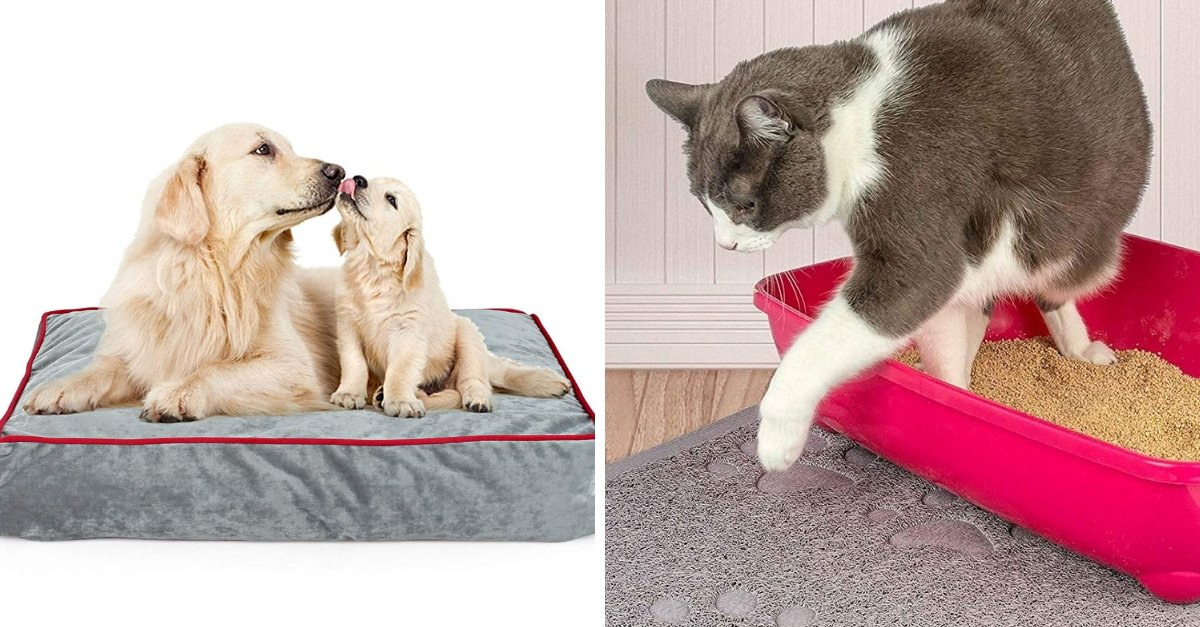 20 Products That Pet Owners Need For A Happy And Fresh Home
