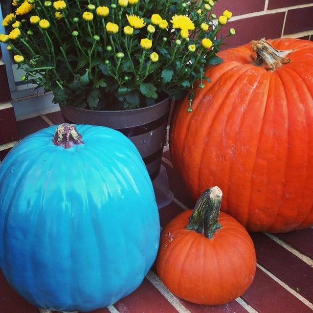 teal pumpkin