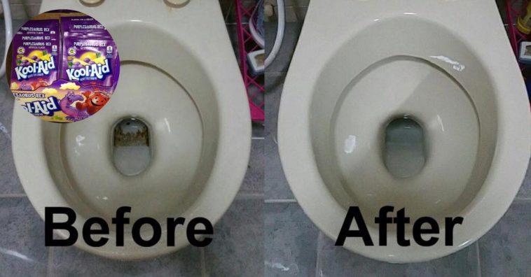 toilet-hacks