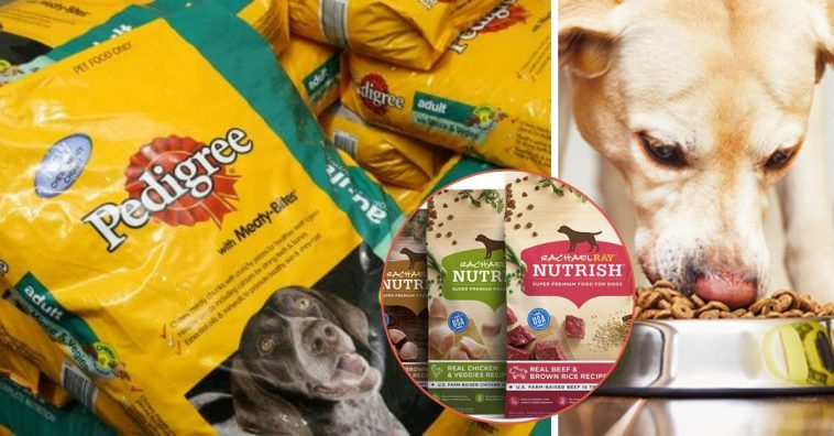 Are Millennials Ruining Household Dog Food Brands