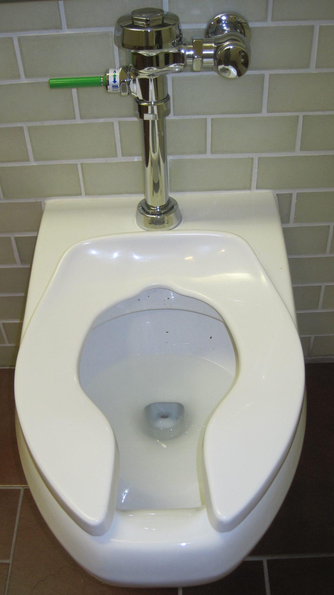 toilet handle
