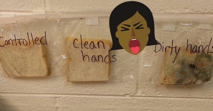 bread-experiment