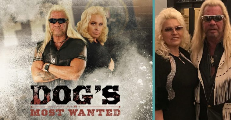 dogs most wanted
