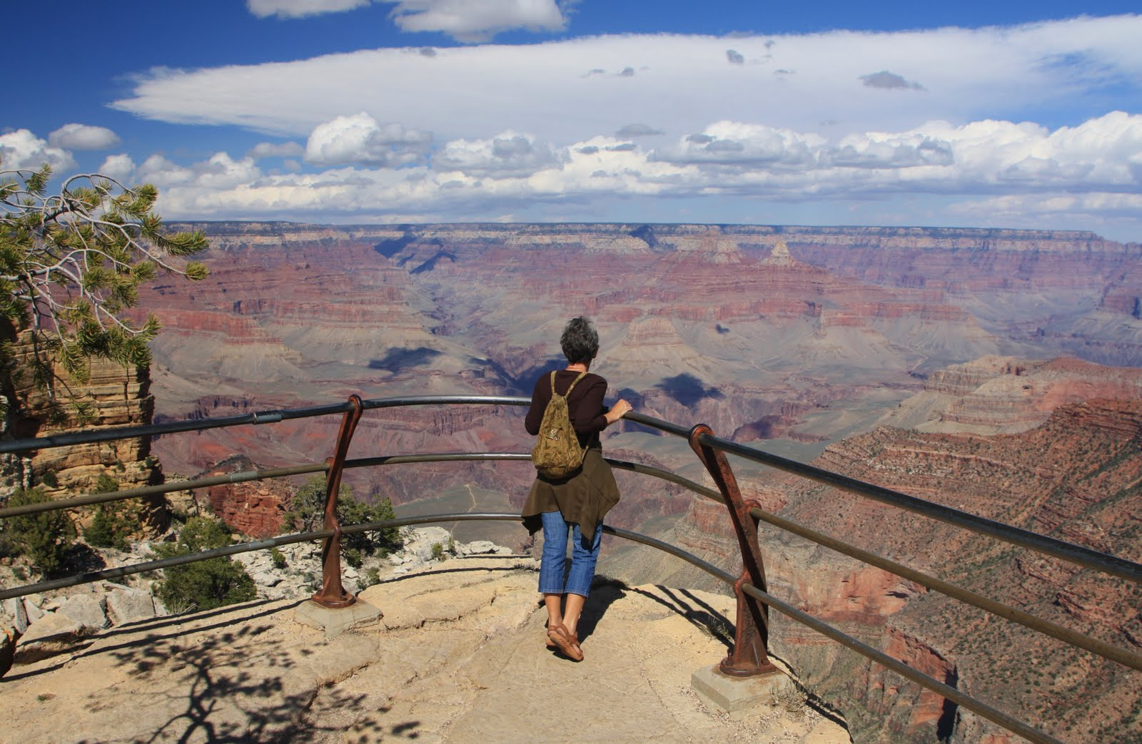 Standing at the railing of the Grand Canyon