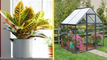 garden trends in 2019