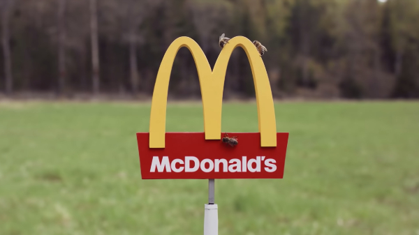 Check Out The World's Smallest McDonald's Made For Bees