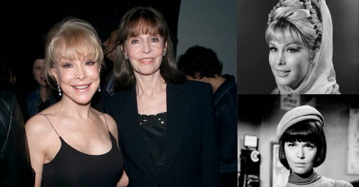 Barbara Eden and Barbara Feldon discuss their iconic 1960s television roles