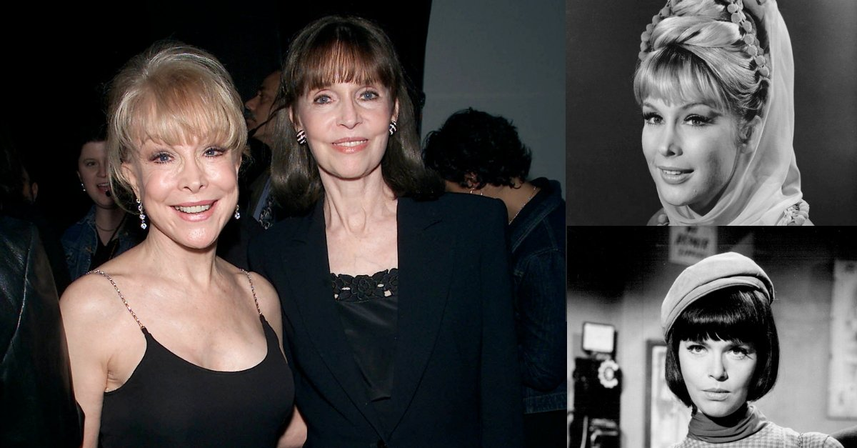 When Jeannie met Agent 99: Barbara Eden And Barbara Feldon Discuss Their Incredible TV Roles