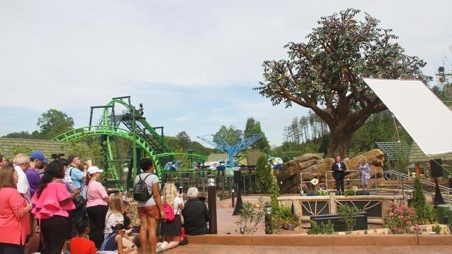 dollywood theme park
