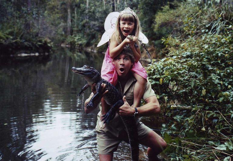 Steve and Bindi Irwin catching a crocodile