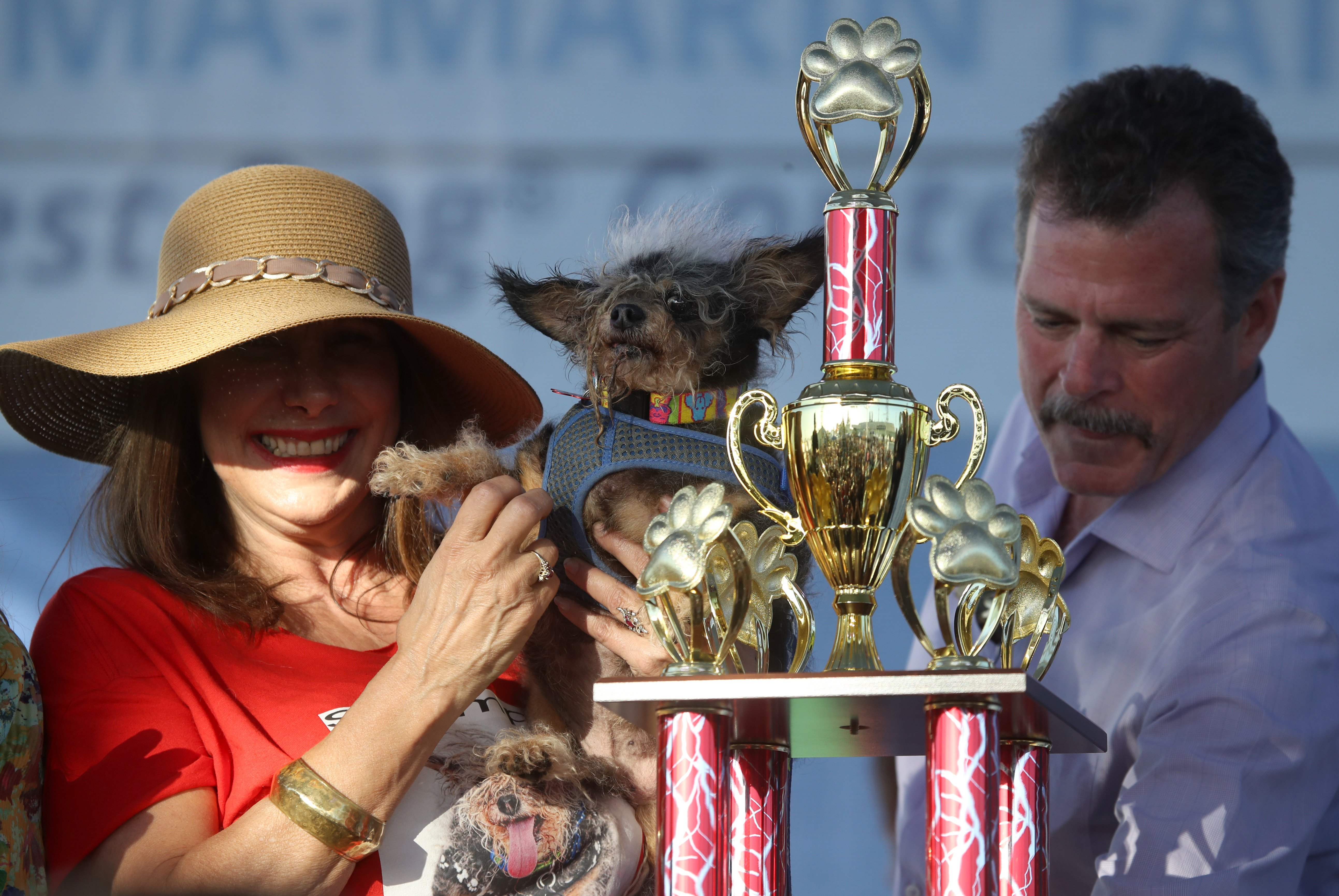 winner of the ugliest dog contest in california