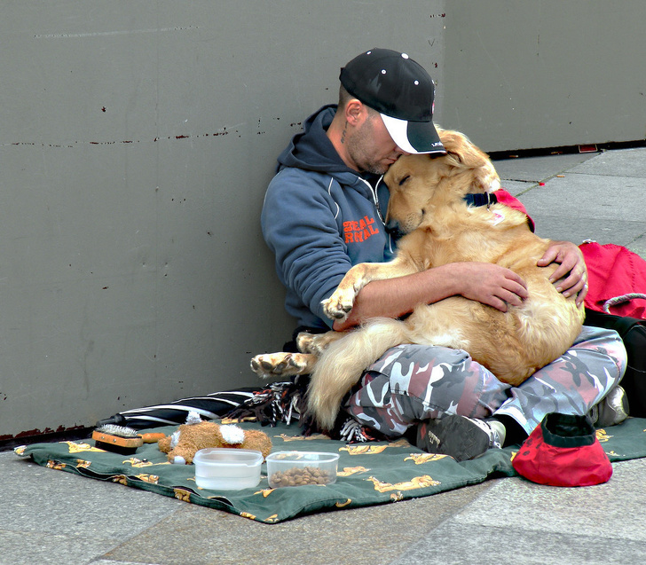 homeless man helps stray dog
