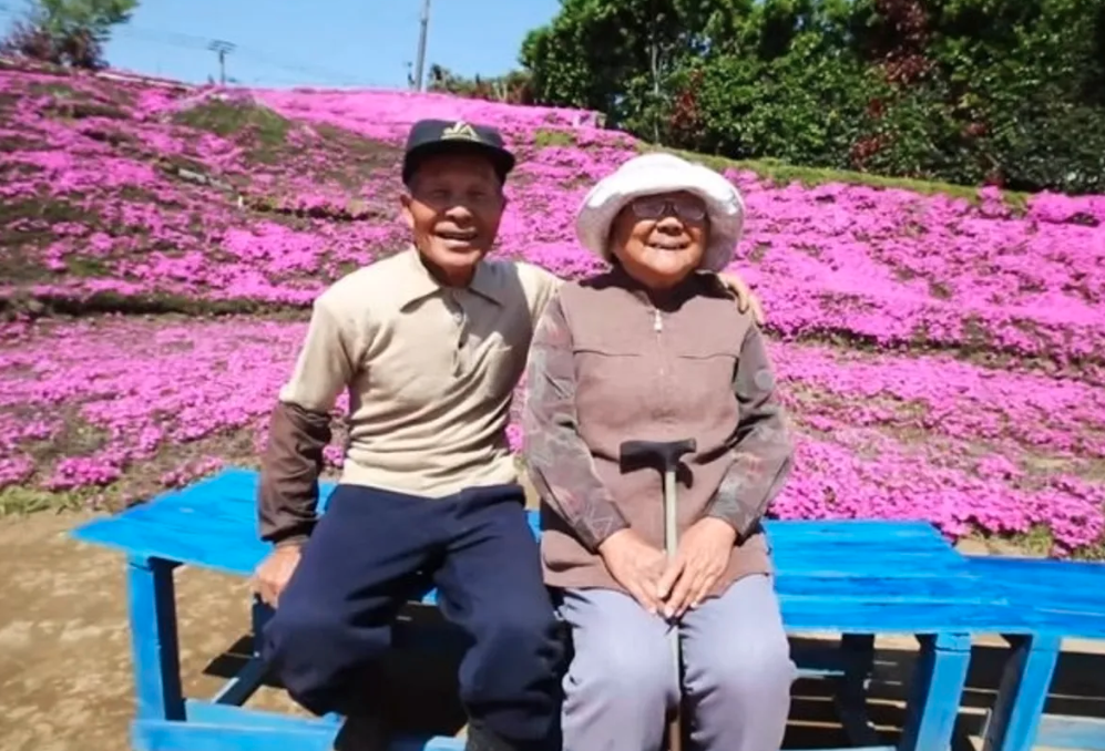 man plants thousands of flowers for blind wife