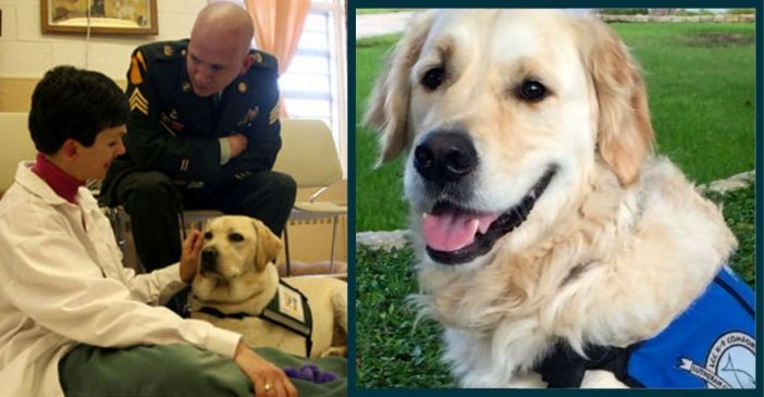 Disabled Veteran Meets The Woman Who Helped Train His Service Dog
