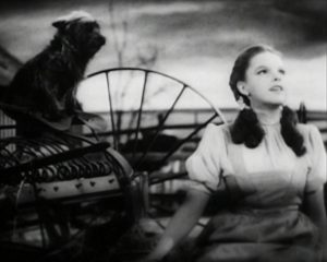 Dorothy and Toto in Kansas.