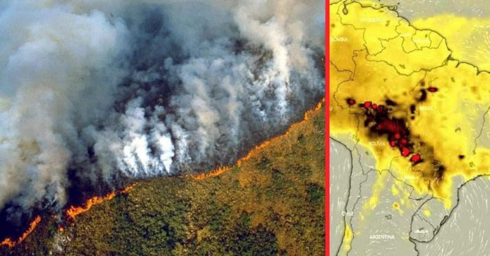 The Amazon Rainforest in Brazil has been burning down for three weeks