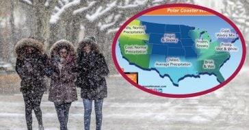 The Farmer's Almanac Predicts Winter 2020 To Be 'Frigid' And 'Freezing'