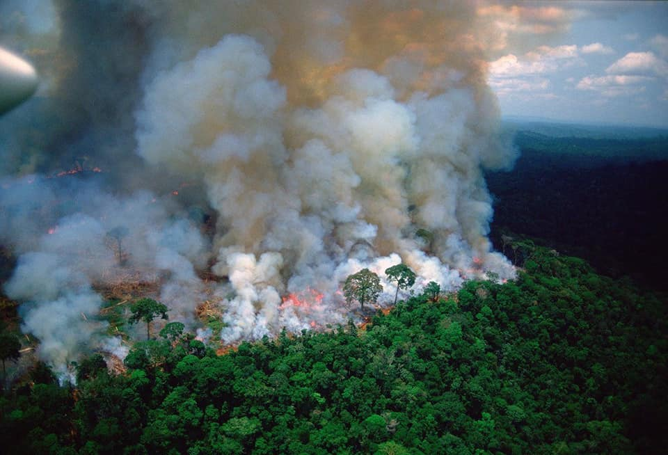 brazil amazon rainforest fires