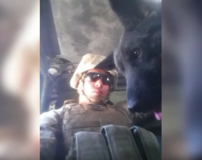 us marine reunites with his military dog