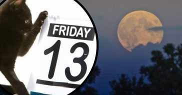 How To View The Rare Harvest Moon On Friday The 13th This Week!
