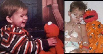 Lost Elmo Doll Went Missing For 12 Years, Then Returned To Her 10 Years After Her Son's Death