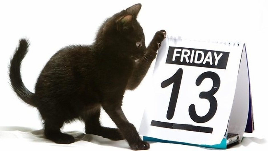 black cat bad luck friday the 13th