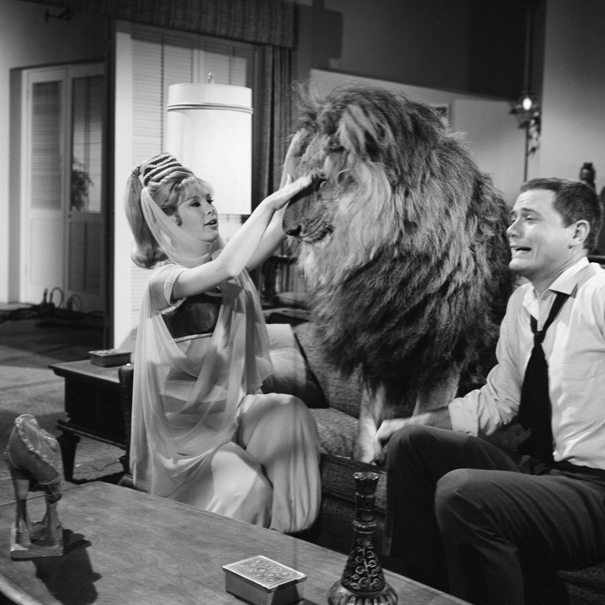 I Dream of Jeannie Lion Episode