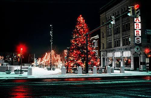 bethlehem pennsylvania christmas trees