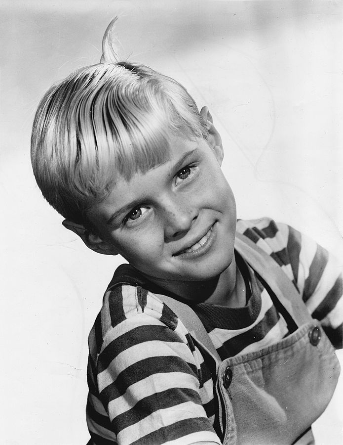 dennis the menace jay north